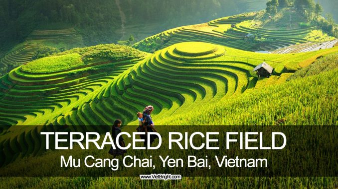 Amazing terraced rice field in Mu Cang Chai, Yen Bai, Vietnam   www.VietBright.com